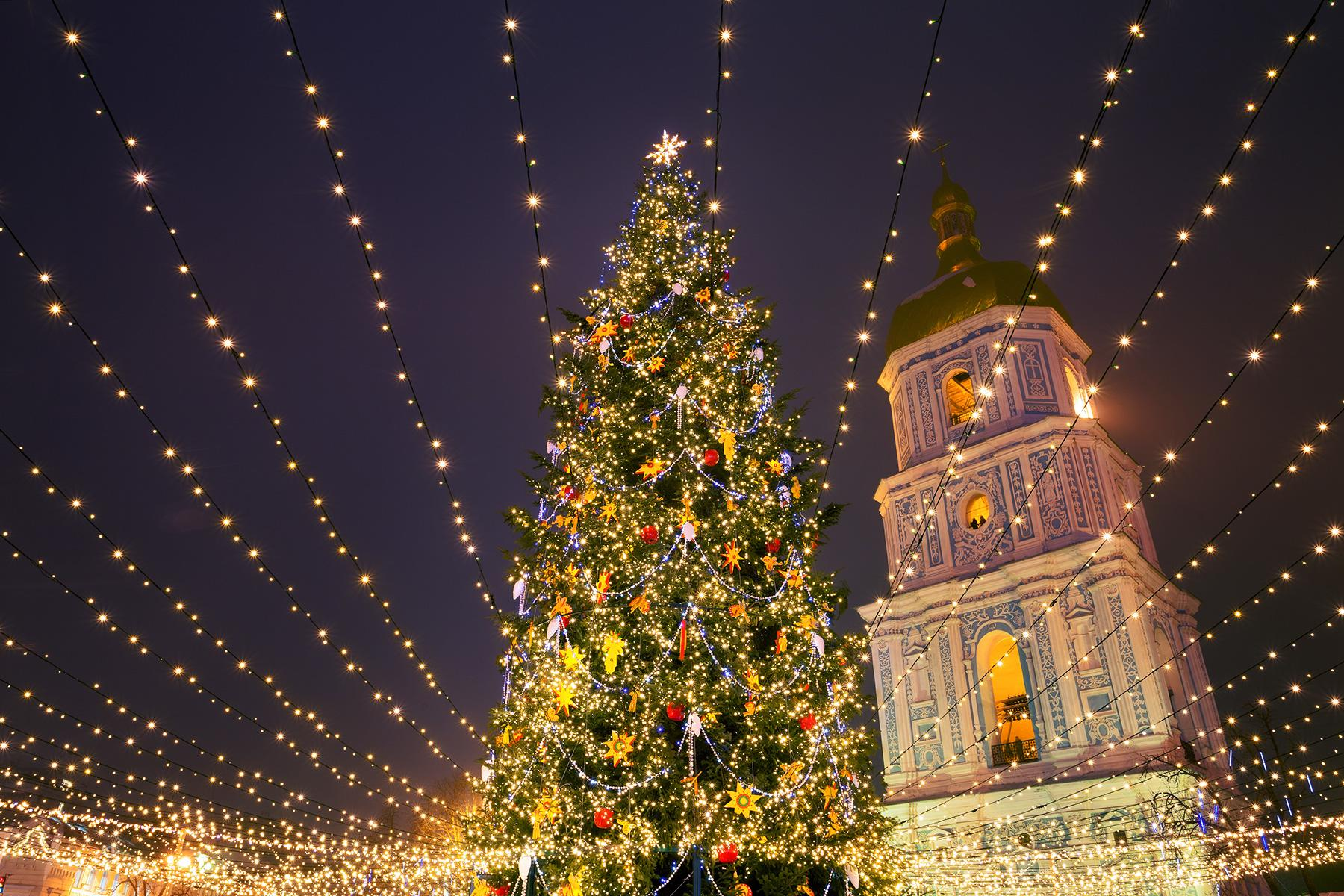 A beautiful christmas tree